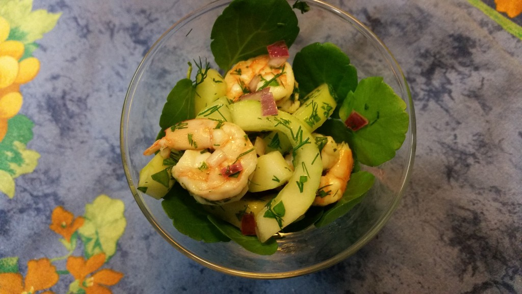 Cucumber Shrimp Salad, health, wellness, diet, dietitian, nutrition, nutritionist, michelle moreau, chef, healthy kitchen, healthcare, medical insurance, Portsmouth, NH, seacoast, celiac, cardiac, diabetes, diet, weight loss, recipe, couneling, healthcare, seafood, appetizer, herbs, farmers market, lunch, brunch
